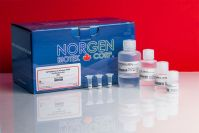 Cytoplasmic & Nuclear RNA Purification Kit,  50 Preps,   Manufacturer reference:   21000
